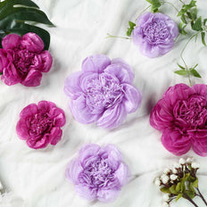 6 Pack Lavender & Eggplant Assorted Size Paper Peony Flowers - 7"