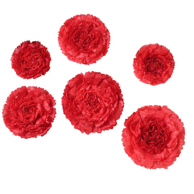 "6 Multi Size Pack | Carnation Red Dual Tone 3D Wall Flowers Giant Tissue Paper Flowers - 12"",16"",20"""