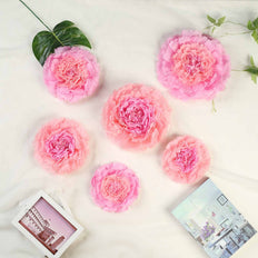 Pack of 6 | Blush/Pink | Multi-size Carnation 3D Giant Paper Flowers