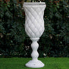 "6 Pack | 24"" Tall 