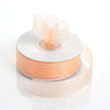 "25 Yard 7/8"" DIY Peach Organza Ribbon With Mono Edge"