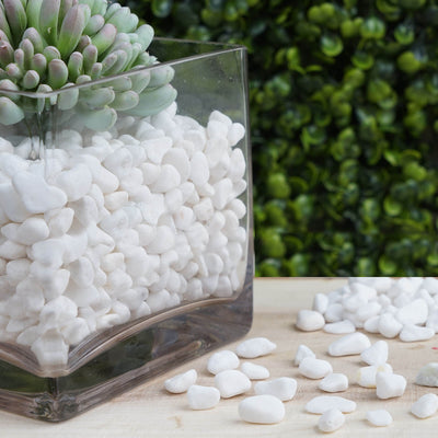 Pack of 2 Lbs | White Decorative Crushed Gravel | Pebble Stone Vase Fillers
