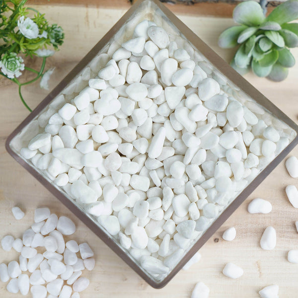 Pack of 2 Lbs | White Decorative Crushed Gravel | Pebble Stone Vase Fillers - Clearance SALE