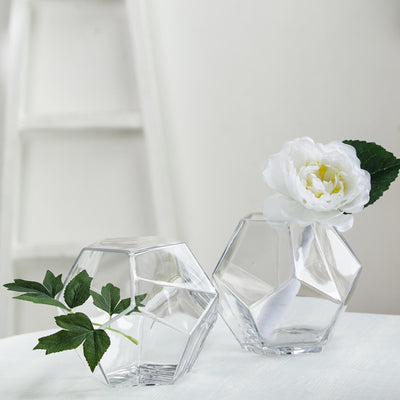 2 Pack | 7inch Clear Glass Geometric Vases | Table Top Prism Terrariums Glass Vases