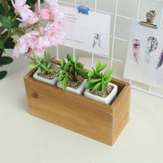 4 Pack | 11x6'' Natural Rectangular Wood Planter Box Set With Removable Plastic Liners