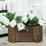 "2 Pack | 10""x5"" 