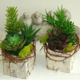 "Set of 3 | Multi Colored Fake Succulents | 7"" Spiky Crassula Decorative Artificial Plants"