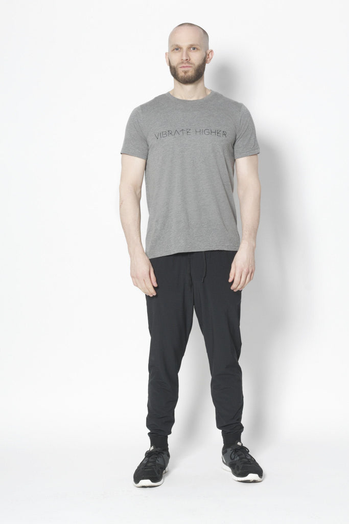 Vibrate Higher T-Shirt - Vibrate Higher; gray