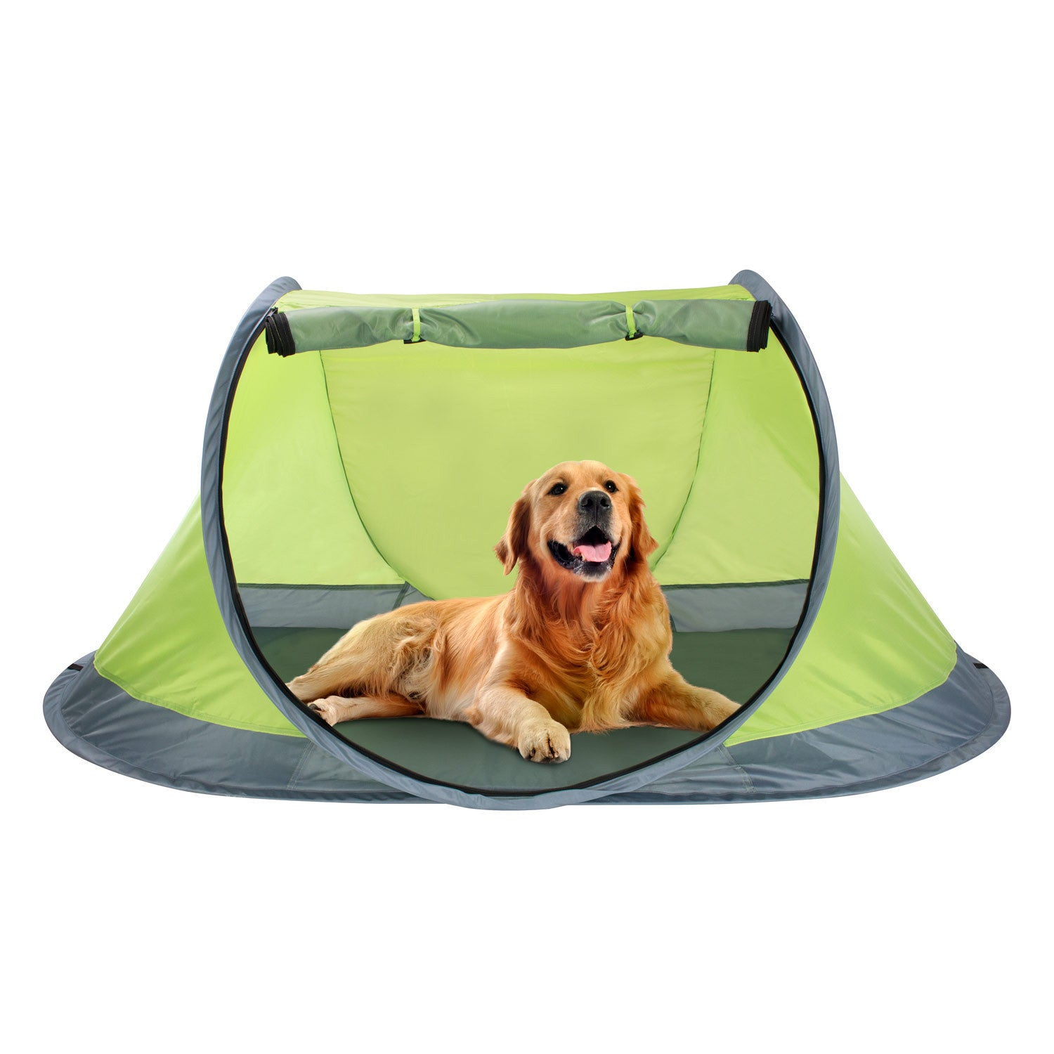 Outdoor Pop Up Pet Tent  sc 1 st  Winterial.com & Pop-up Pet Tent | Camping or Beach | Foam Sleeping Pad - Winterial.com