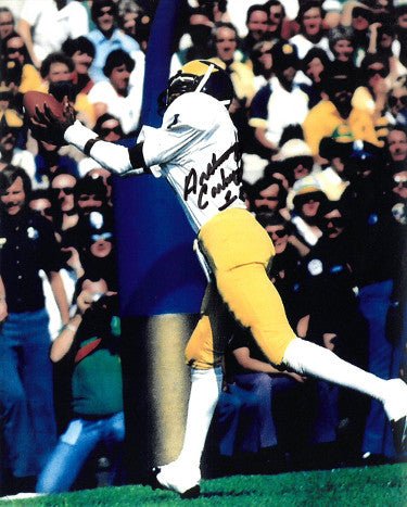 Anthony Carter signed Michigan Wolverines 8x10 Photo #1 (TD Catch) PSM-Powers Sports Memorabilia