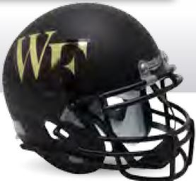 Wake Forest Demon Deacons Miniature Football Helmet Desk Caddy B Matte Black B PSM-Powers Sports Memorabilia