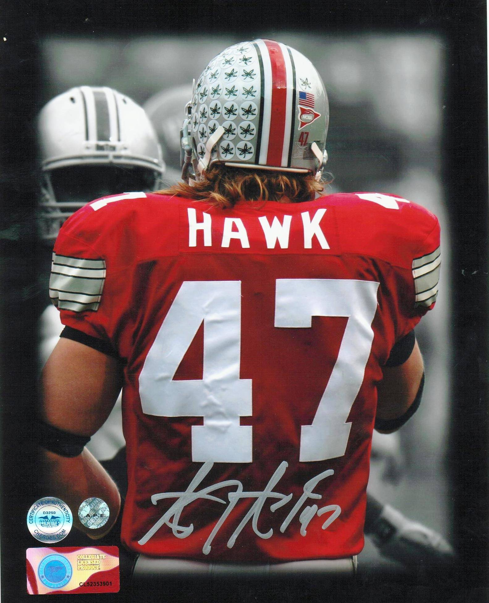 newest collection 95b44 2dfd5 AJ Hawk Ohio State Buckeyes Autographed 8x10 Photo -Back- PSM