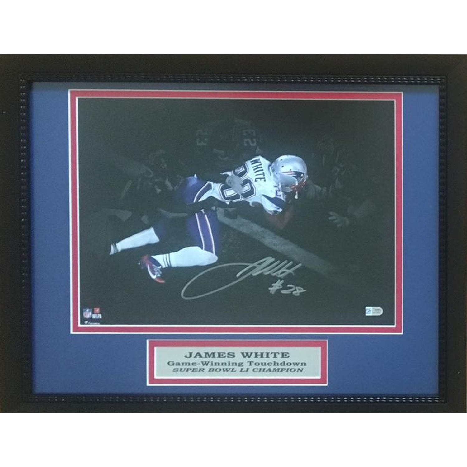 11x14 Framed Photo (7-10 day turnaround)-Powers Sports Memorabilia