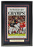 Washington Nationals 2019 Champs Framed 18x30 Washington Post Cover Page Photo PSM-Powers Sports Memorabilia