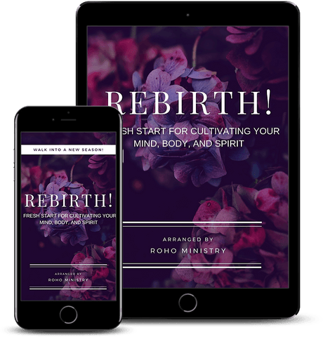 Rebirth! A Christian's Guide to a Fresh Start in your Mind, Body, and Spirit (E-book)