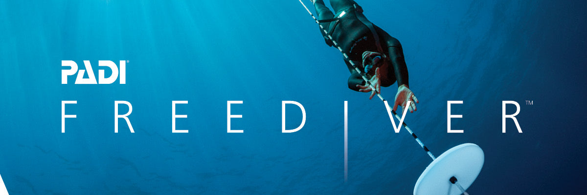 Freediving Programs
