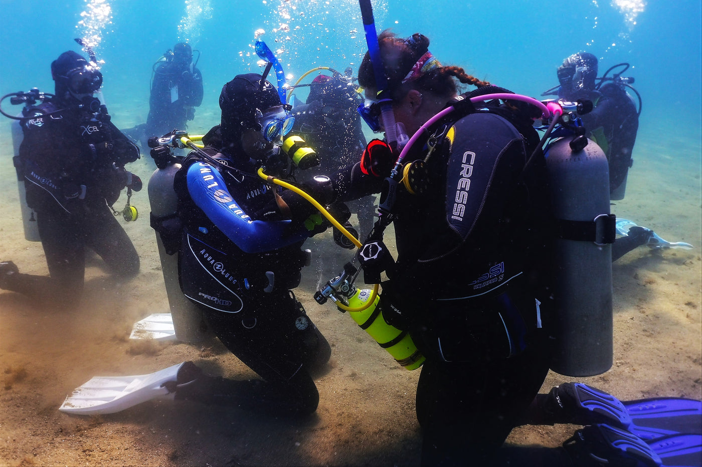 PADI Professional Certification Programs