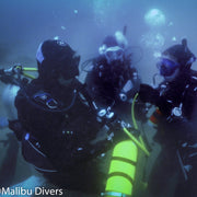 BSA Deep Diver Specialty