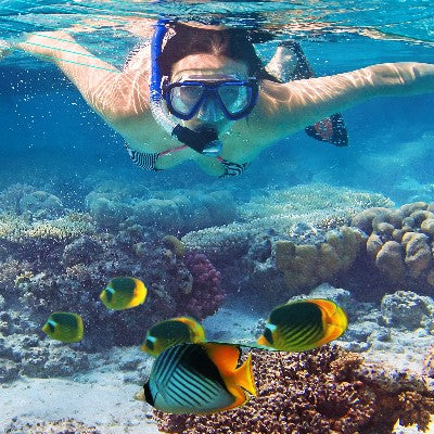 Discover Snorkeling Program (Daytime & Night)
