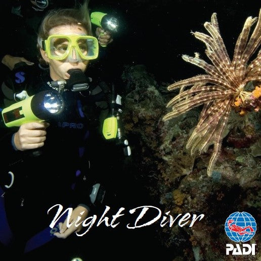 Night Diver eLearning