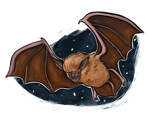 Big Brown Bat Print