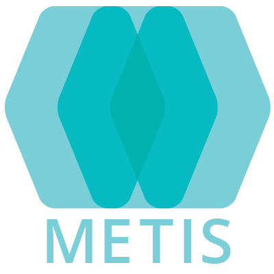 Metis - policy, strategy and capacity for the built environment