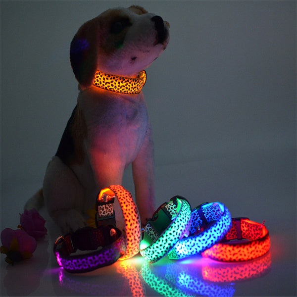Fashion Leopard LED Dog Collar Flashing In Dark  Nylon 3 Mode Lighting Safety LED Pet Collar 2.5cm Wide Luminous Pet Products - LADSPAD.COM