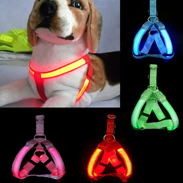 LED Flashing Light Dog Harness Safety Pet Dog Puppy Harness Collar Lead Leash  HG99 - LADSPAD.COM