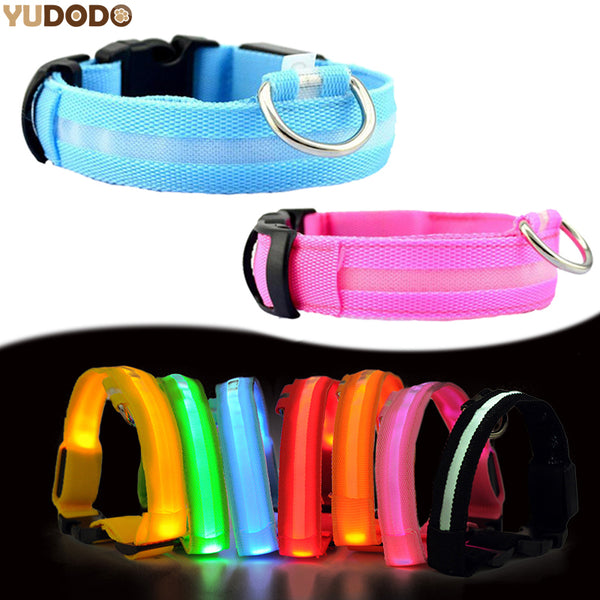 Nylon LED Pet Dog Collar,Night Safety Flashing Glow In The Dark Dog Leash,Dogs Luminous Fluorescent Collars Pet Supplies - LADSPAD.COM