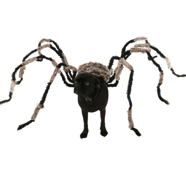 Funniest Halloween Spider Decoration Dog Costume DIY Large Spider Prop Homemade Dog Treats To Hand Out To Dogs - LADSPAD.COM