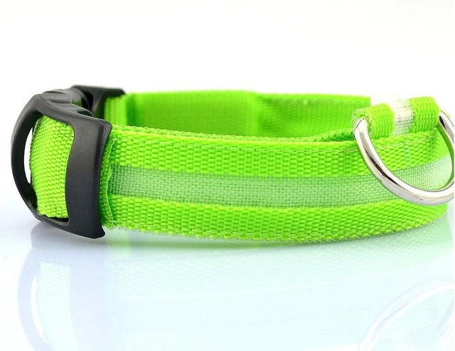 LED Dog Collar Glow Nylon for Dogs Puppy Cats Pet Large Adjustable Night Luminous Collar Pet Supplies pet shop dog acessorios - LADSPAD.COM