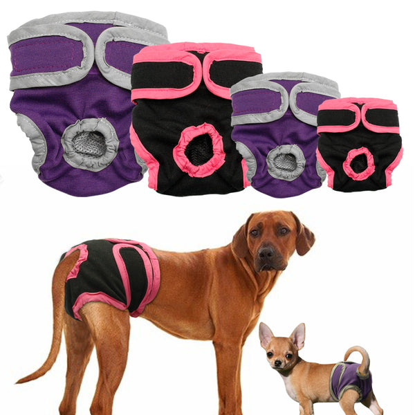 Female Dog Shorts Puppy Physiological Pants Diaper Pet Underwear For Small Meidium Girl Dogs - LADSPAD.COM