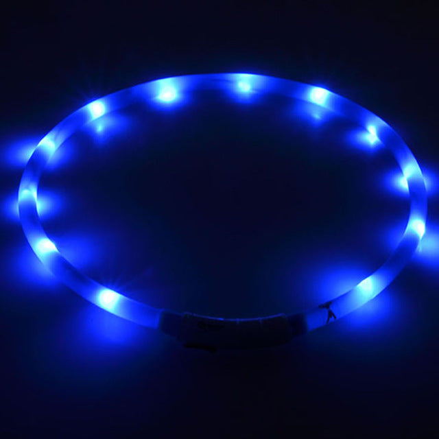 Adjustable USB luminous Lighting LED dog collar - LADSPAD.UK