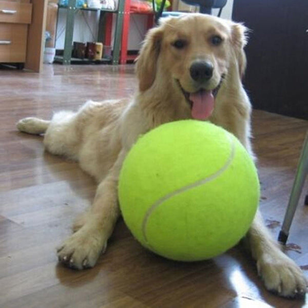 24CM Giant Tennis Ball For Pet Chew Toy Big Inflatable Tennis Ball Signature Mega Jumbo Pet Toy Ball Supplies Outdoor Cricket - LADSPAD.COM