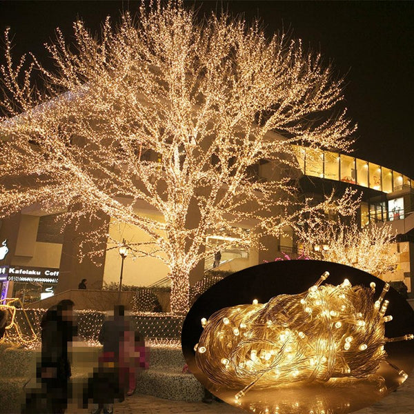 10M 20M 30M 50M 100M LED string Fairy light holiday Patio Christmas Party Wedding decoration AC 220V/110V outdoor garland light - LADSPAD.UK