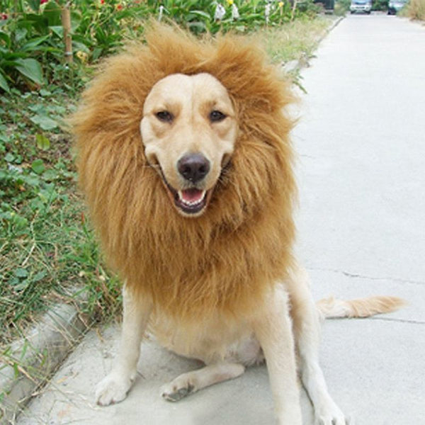 Pet Costume Cat Halloween Clothes Fancy Dress Up Lion Mane Wig For Dogs Festival Dress Up - LADSPAD.COM