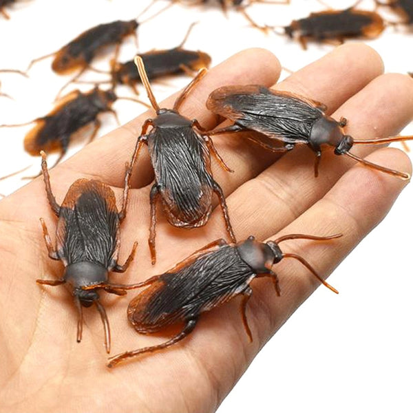 10pcs/lot  Special Lifelike Model Simulation Fake Rubber Cock Cockroach Roach Bug Roaches Toy Prank Funny Trick Joke Toys - LADSPAD.COM