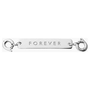 Forever Silver Plate Two Lock Tag