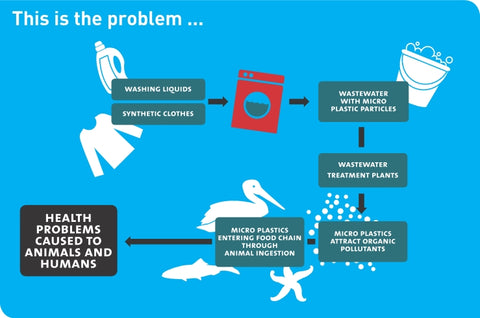 The effects of plastic microfibres on the food chain
