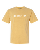 Hearts of Joy International Adult T-Shirt
