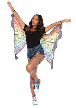 Mini rainbow butterfly wings