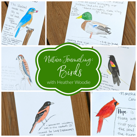Nature Journaling: Birds with Heather Woodie