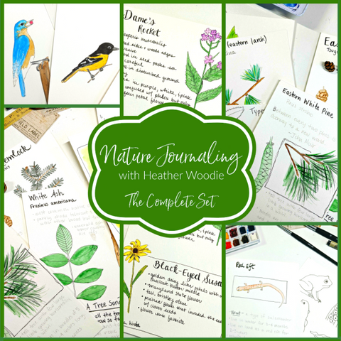 Nature Journaling with Heather Woodie: The Complete Set