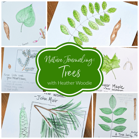 Nature Journaling: Trees with Heather Woodie