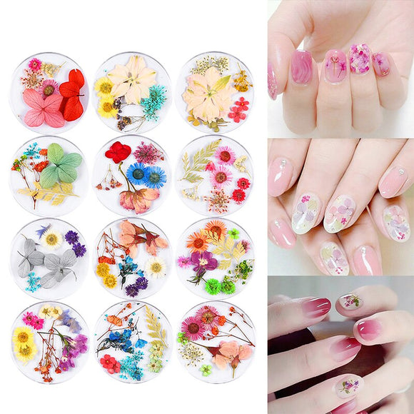 RBAN NAIL 3D Dry Flowers Stickers Real Preserved Dried Flower Nail Art Decoration Tips DIY UV Gel Polish Manicure Tools