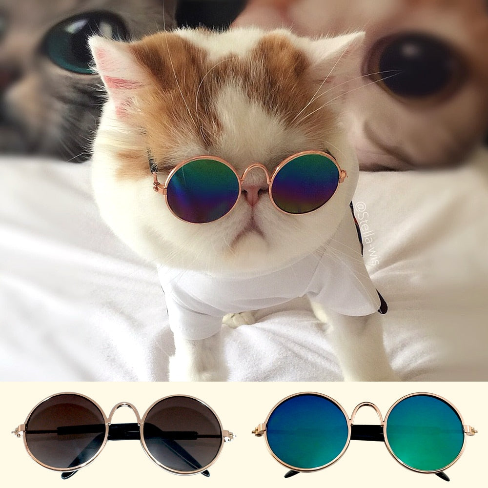 Cat Sunglasses Dog Cats Kitten Pet Accessories Summer Dogs Cats Glasses Grooming Products Black Green Colors