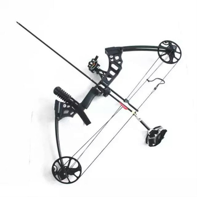 Professional Compound Bow 35-70 lbs Aluminum Alloy Archery Bow Powerful Outdoor Hunting Shooting Bow G10