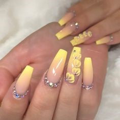 Yellow Ombre Seashell decorations
