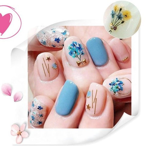 3D Clover Colorful Real Dried Flower Leaf Nail Decoration For Manicure