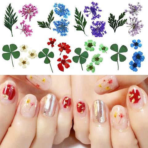 3D Clover Colorful Real Dried Flower Leaf Nail Decoration